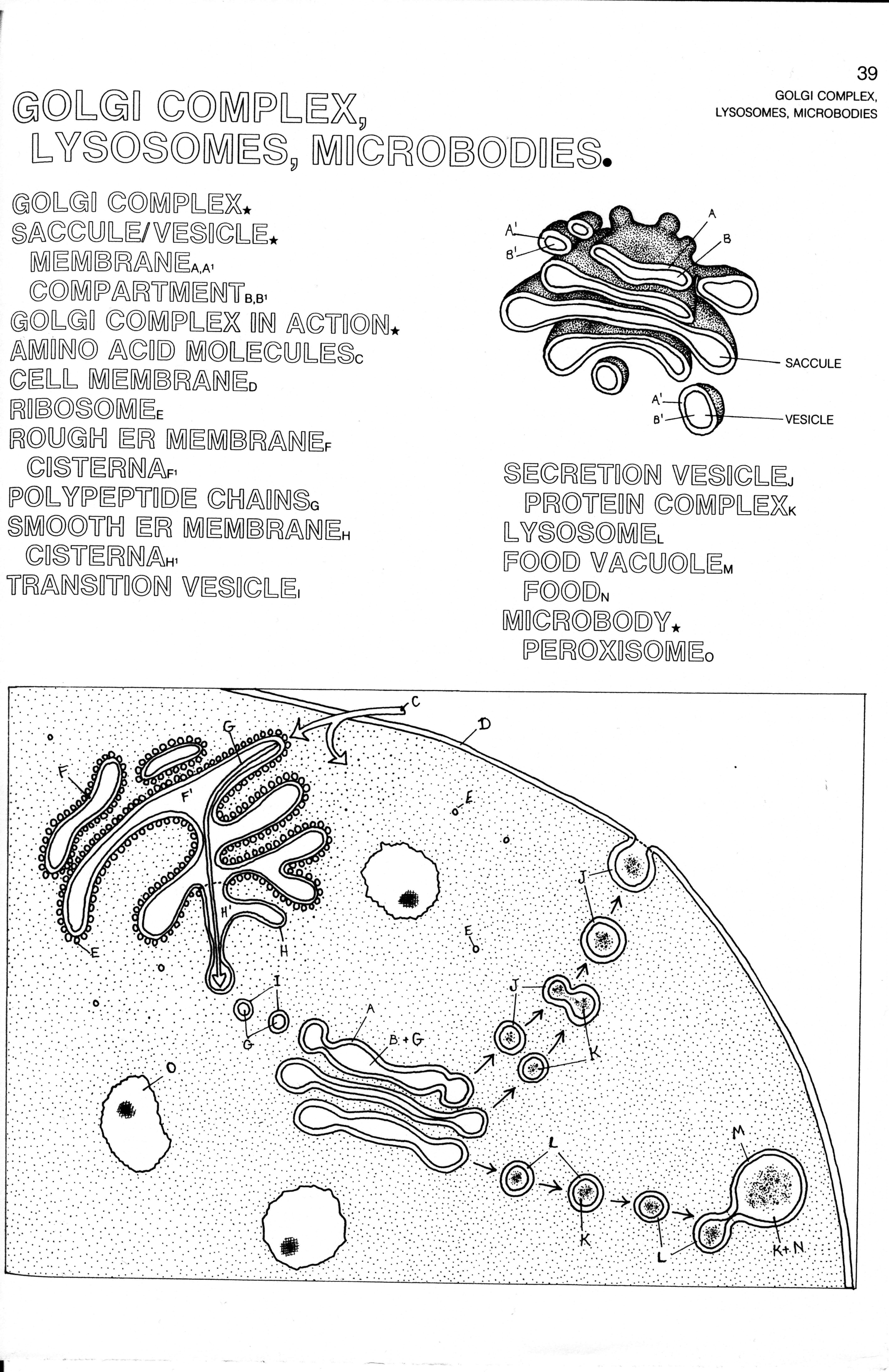 biology 1    cm